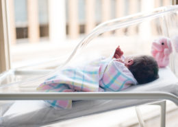new baby laying in bassient by window in hospital