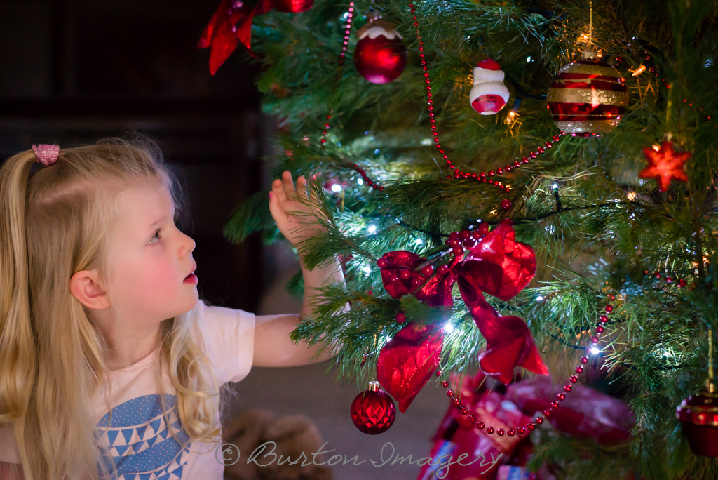 little girl reaches out to touch christmas tree during lifestyle photo session